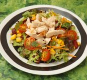 Mixed salad with chicken Royalty Free Stock Photos