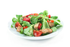 Mixed salad with chicken strips Royalty Free Stock Photography