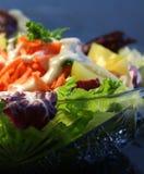 Mixed salad close-up. Details of mixed salad royalty free stock photography