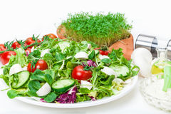 Mixed Salad, Cress, Dip, spices Stock Image
