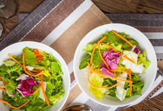 Mixed salad with croutons. Stock Images