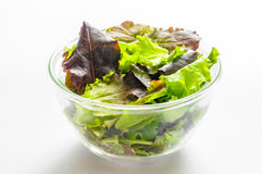 Mixed Salad in a Cup Royalty Free Stock Photos