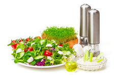 Mixed salad, dip, oil, spice grinders Stock Photos