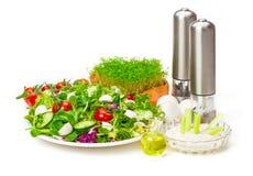 Mixed salad, dip, oil, spice grinders Stock Photos
