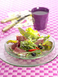 Mixed salad with duck breast Stock Images