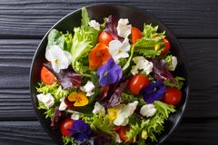 Mixed salad of edible flowers with lettuce, tomatoes and cream c. Heese close-up on the table. horizontal top view from above royalty free stock photos