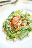 Mixed Salad with Egg Royalty Free Stock Photography