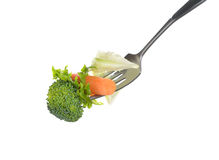 Mixed salad on fork Stock Photography