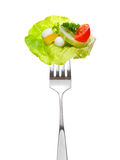 Mixed salad on fork Stock Photos