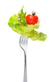 Mixed salad on fork. Isolated on white Stock Images