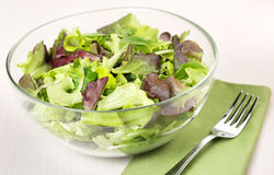 Mixed salad, fork and napkin Stock Image