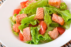 Mixed salad of fresh vegetables with pieces of salmon Royalty Free Stock Photography
