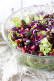 Mixed salad on glass bowl with lettuce, red beans, seeds and purple cabbage Stock Images