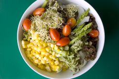 Mixed salad on green Stock Photography