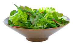 Mixed Salad Greens over white Royalty Free Stock Image