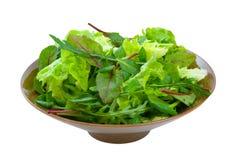 Mixed Salad Greens over white stock photos