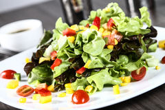 Mixed Salad. House salad served with balsamic vinegar and olive oil Stock Photography