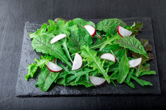 Mixed salad leaves with radish on black slate plate. Closae up. Stock Photos
