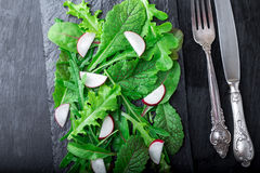 Mixed salad leaves with radish on black slate plate. Top view. Stock Images