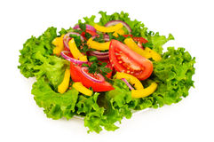 Mixed salad with lettuce Royalty Free Stock Image