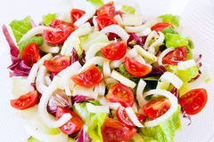 Mixed salad, lettuce, radicchio, fennel, pachino tomatoes. Mixed salad in glass dish and white background. Close-up Stock Images