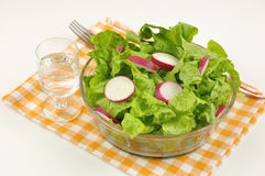 Mixed salad with lettuce and radish Royalty Free Stock Image