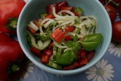 Mixed salad. A mixed salad of tomatoes, cucumber and onions Stock Photo
