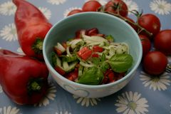 Mixed salad. A mixed salad of tomatoes, cucumber and onions Stock Photography