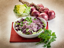 Mixed salad with red cabbage Stock Photography