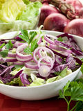 Mixed salad with red cabbage Stock Image
