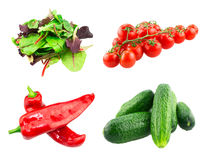 Mixed salad red leaf, spinach red chard, fresh Stock Photo