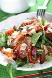 Mixed salad with salami royalty free stock photography