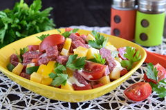 Mixed salad with salami sausage, cheese, tomato, and paprika with yogurt and garlic sause in a yellow ceramic bowl. Easy royalty free stock image