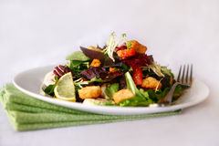 Mixed Salad Shot in High Depth of Field Royalty Free Stock Images