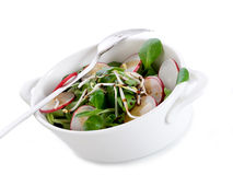 Mixed salad with soy sprout Royalty Free Stock Images