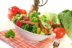 Mixed salad with strips of turkey Royalty Free Stock Photography
