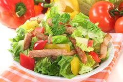 Mixed salad with strips of turkey Royalty Free Stock Images