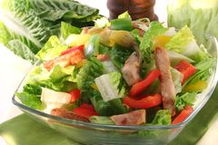 Mixed salad with strips of turkey Royalty Free Stock Photo