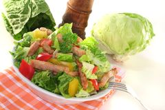 Mixed salad with strips of turkey Royalty Free Stock Image