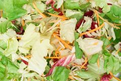 Mixed Salad Texture Royalty Free Stock Photo