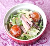 Mixed salad with tomatoes, cheese and ham Stock Photography