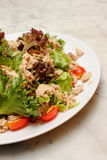Mixed salad with tuna Stock Images