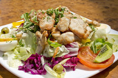 Mixed salad with turkey meat Stock Image