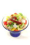 Mixed salad with turkey strips Royalty Free Stock Image