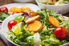 Mixed salad with croutons. Stock Photos