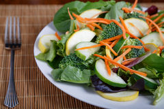 Fresh Vegetable Salad on Bamboo Mat with Fork Stock Images