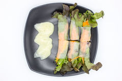 Mixed salad. Wrapped in big stripe rice noodles bite size with salad dressing in black dish on a white background Stock Images