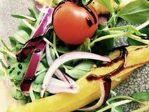 Mixed salad Royalty Free Stock Image