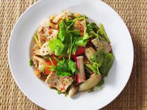 Mixed salad or Yummy mixed Yum Ruom mit, with pork, crab, mea royalty free stock image