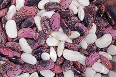 Mixed scarlet runner beans  Royalty Free Stock Photos